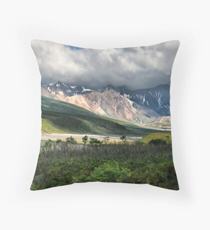 Photographer's Palette of Color - Denali NP Throw Pillow