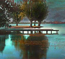 Lake Views - Autumn II by Chris Armytage™