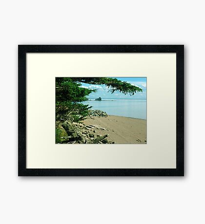 On The Glooscap Trail Framed Print