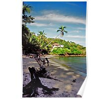 house on the beach in Martinique Poster