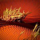 Sand ripples of namibian desert by Saka