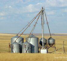 Grain Elevator by Susan Vinson