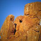 Alone on the rocks by Saka