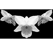 Sereneness Photographic Print