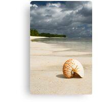 Nautilus - Cocos (Keeling) Islands Canvas Print
