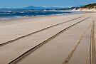 Ocean Beach by Werner Padarin