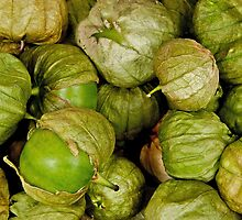Tomatillo Tomato by Jeffrey  Sinnock
