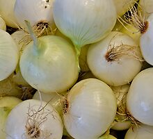 white onions by Jeffrey  Sinnock