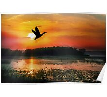 Sunset on the Mississippi Flyway Poster
