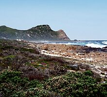 Cape of Good Hope, South Africa by Carole-Anne