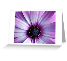 Purple Macro. Greeting Card