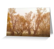 Fog and Willow Greeting Card