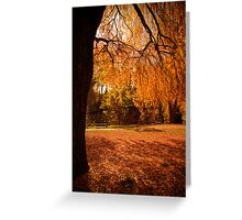 Autumn leaves in Bright Greeting Card