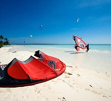 Kites - Cocos (Keeling) Islands by Karen Willshaw