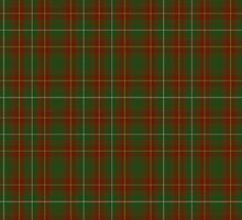 00119 Prince Edward Island District Tartan  by Detnecs2013