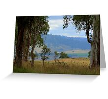 Framed by gum trees Greeting Card