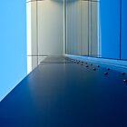 Looking Skyward by Karen Stackpole