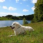 Ditte takes a rest by the lake by Trine