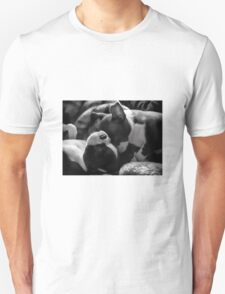 Sleeping Beauties - Boston Terrier Puppies T-Shirt