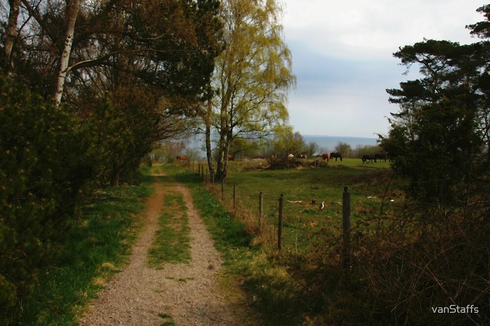 Rural, Peaceful View by vanStaffs