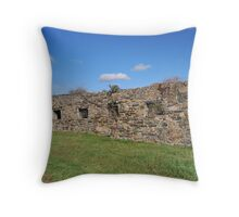 The Rose Barn Throw Pillow
