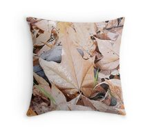 Hidden Rocks Throw Pillow