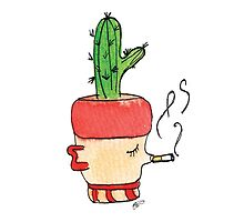 Smokey Joe The Smoking Cactus   Emma Watts by Daniel Watts