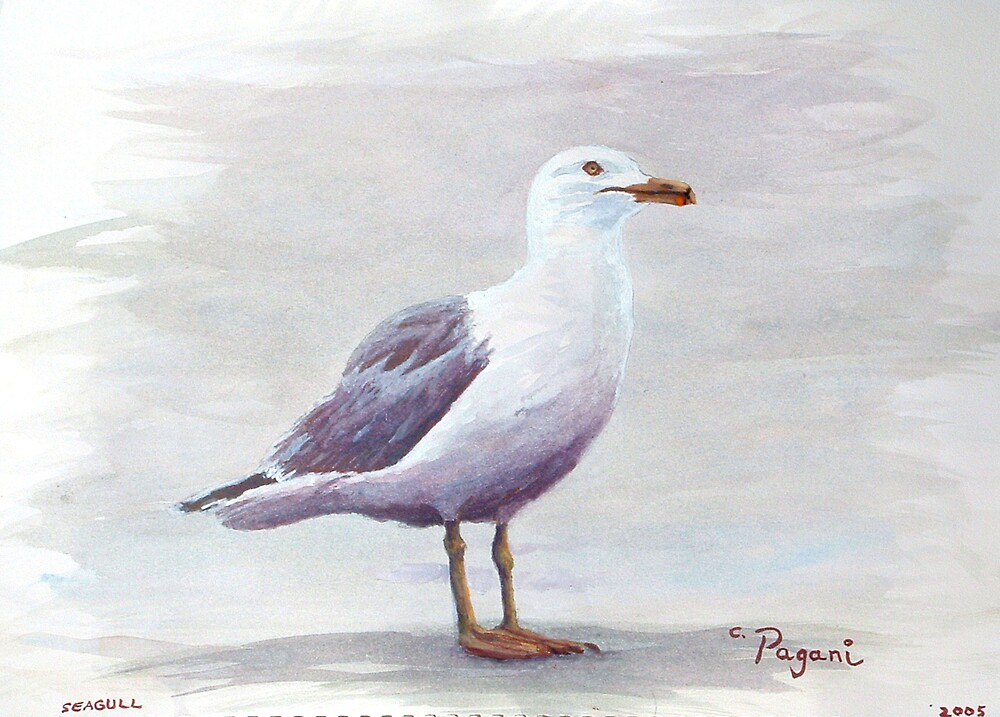 California Gull Acrylic on Paper by Pagani