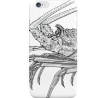 Rock Lobster iPhone Case/Skin
