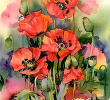 Oriental Poppies by artbyrachel