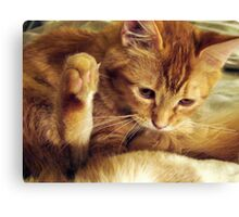 Don't Make Me Put My Foot Down Canvas Print