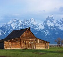 Moulton Barn in the Spring by Bruce Alexander