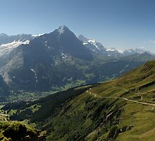 The view from First, Switzerland by Matthew Walters