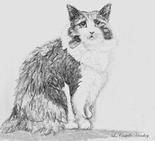 Stumpy the cat by Linda Costello Hinchey