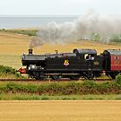 Loco 6619 by Hertsman