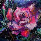 Pink Rose by Anthropolog