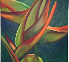 heliconia by coralina