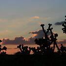 Desert Sunset by Susan Russell
