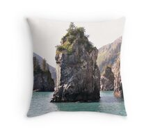 Cook Sailed These Waters Throw Pillow