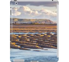 Low Tide at Aberdovey iPad Case/Skin