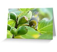 The Fig And Eye Greeting Card
