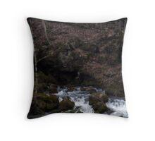 mini falls Throw Pillow
