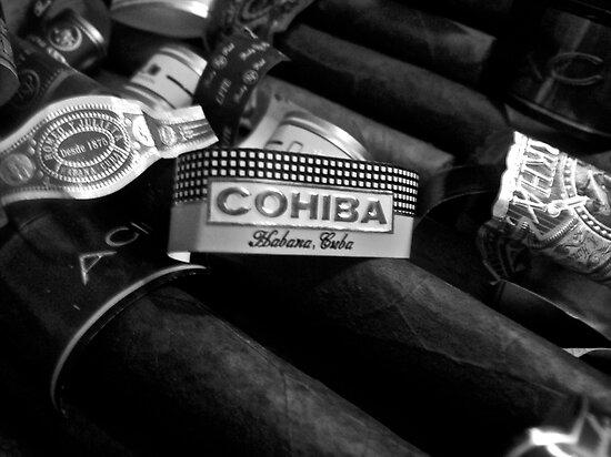 cuban cohiba  by courtneyk
