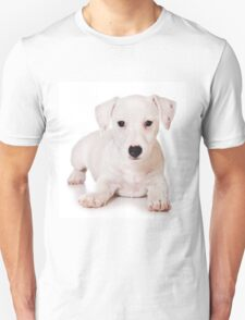 white Jack Russell Terrier puppy T-Shirt