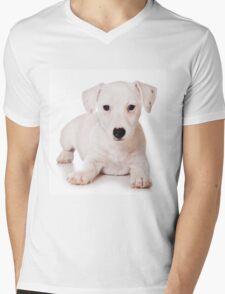 white Jack Russell Terrier puppy Mens V-Neck T-Shirt