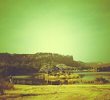 Ranthambore Park by Th3rd World Order