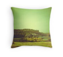 Ranthambore Park Throw Pillow