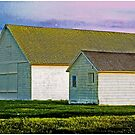 Hamptons Barns, Plain and Simple by Mark Ross