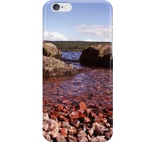 Low Down on Loch Ness iPhone Case/Skin