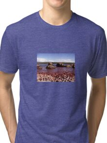 Low Down on Loch Ness Tri-blend T-Shirt